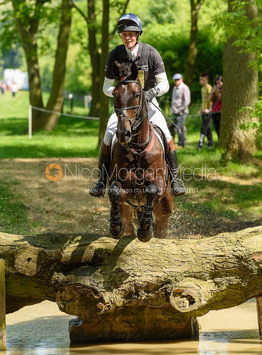 William Fox-Pitt and ORATORIO II, Fairfax & Favor Rockingham Horse Trials 2018