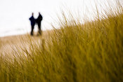 People's silhouettes through beach sand dunes