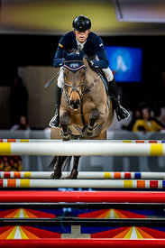 Zurich, Switzerland, 26.1.2018, Sport, Reitsport, Mercedes-Benz CSI Zurich - Longines Grand Prix. Bild zeigt Max KÜHNER (AUT) riding PSG FUTURE...26/01/18, Zurich, Switzerland, Sport, Equestrian sport Mercedes-Benz CSI Zurich - Longines Grand Prix. Image shows Max KÜHNER (AUT) riding PSG FUTURE.