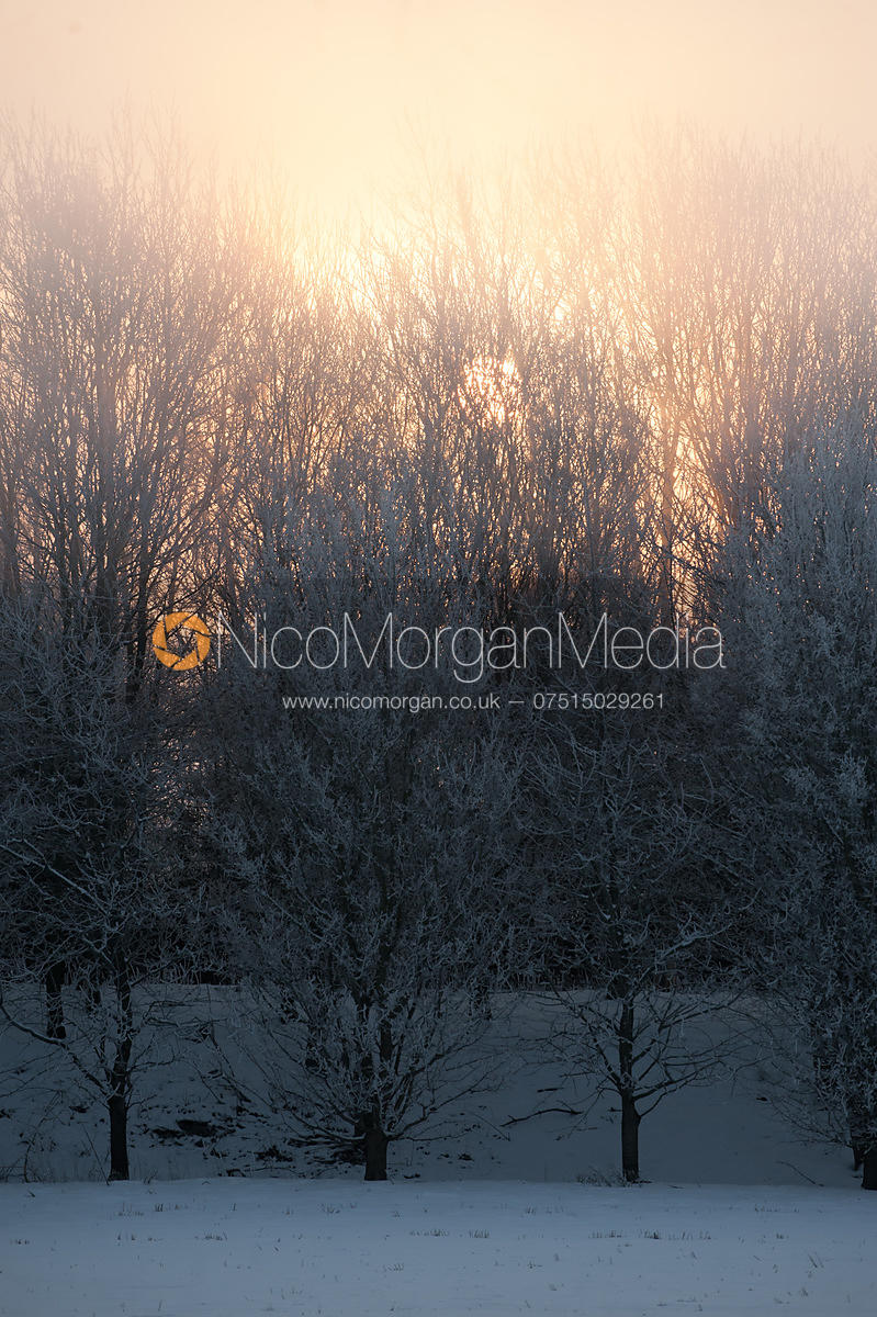 winter-frost-snow-england-006