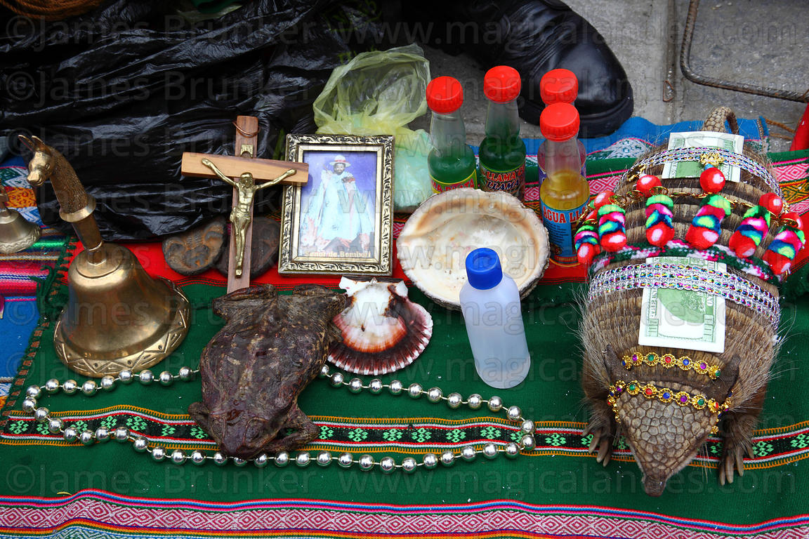 Decorated Andean hairy armadillo (Chaetophractus nationi) and items used for rituals on stall of Kallawaya medicine man, Alas...