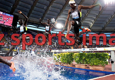 1500m SC. athletes competeat the 2012 Rome Golden Gala - Rome Diamond League