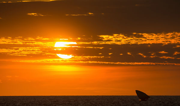 Malagasy fishing boat at sunset off the coast of Anjajavy