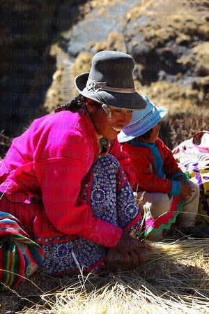 Woman beating damp qoya grass with a stone before making new ropes to rebuild the bridge , Q'eswachaka , Canas province , Peru