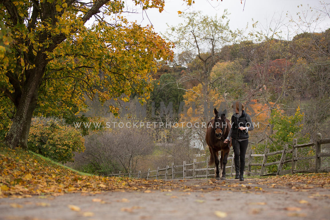 woman walking horse on path in fall