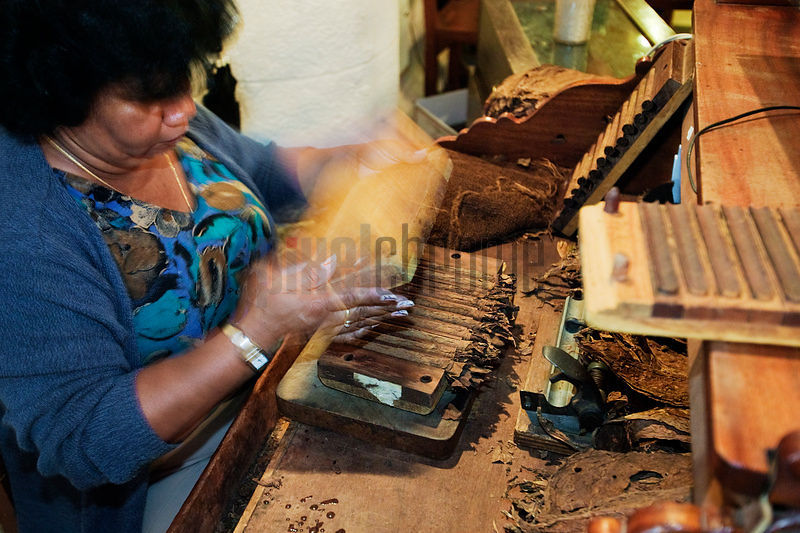 Woman Making Cigars Havana, Cuba