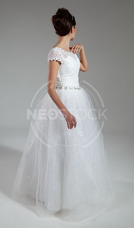 Elena Cindarella Gown Stock Photography