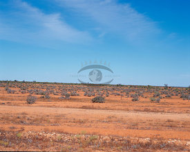 Outback AUS