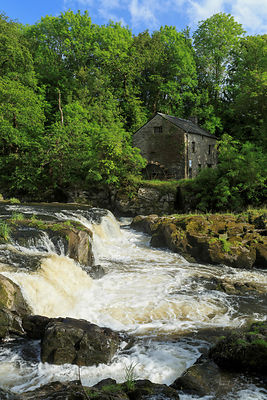 Cenarth Falls and water mill