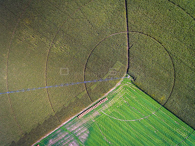 Farming Circles in Utica Nebraska