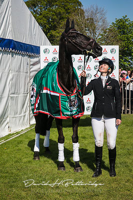 Badminton 2018 - Show Jumping and Presentation
