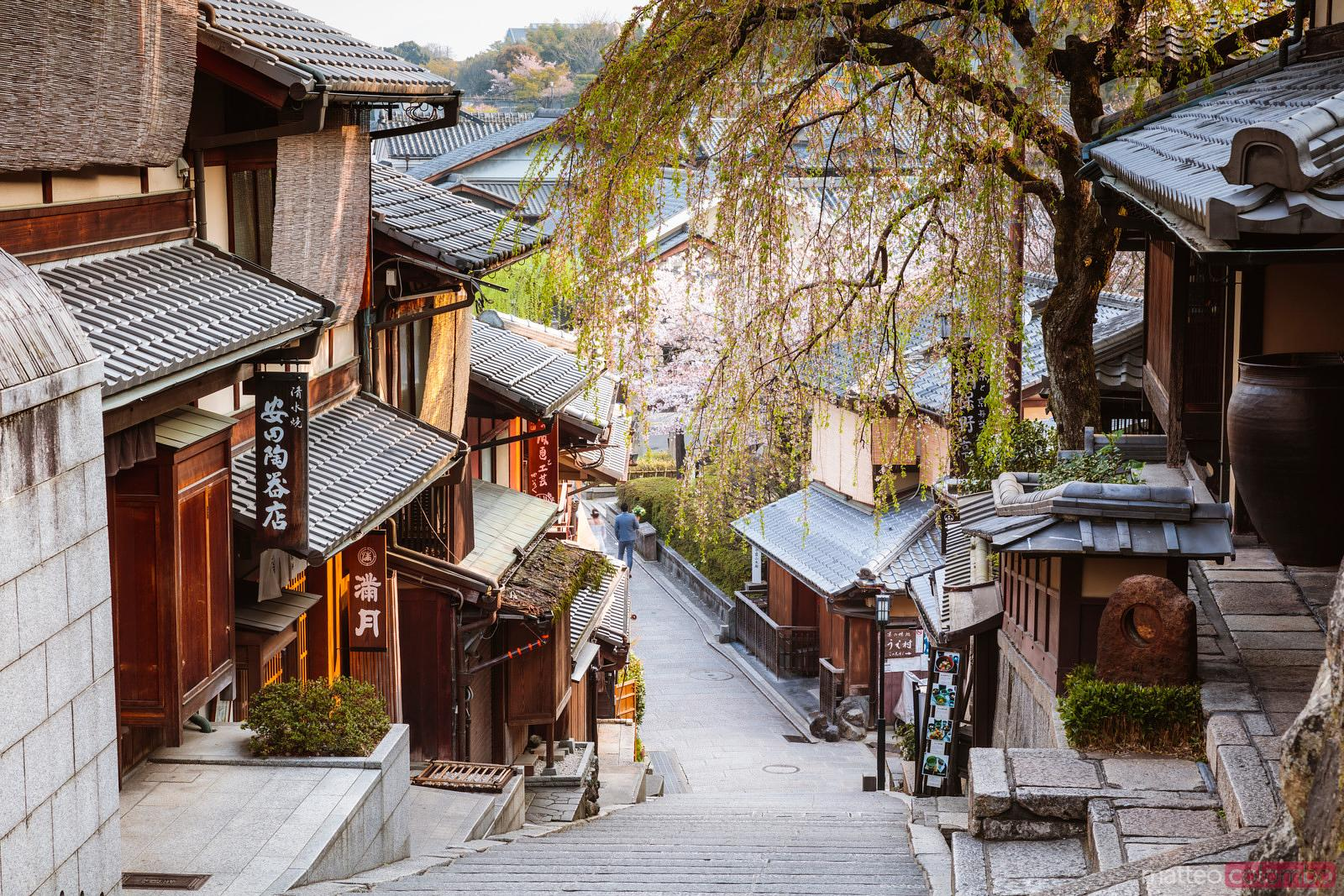 """Image result for kyoto"""""""