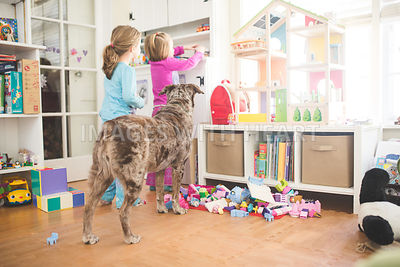 Two young girls and dog playing in room