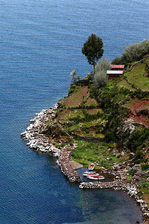 Agricultural terraces and harbour on shore of Taquile Island , Lake Titicaca , Peru