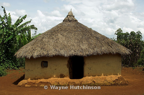 Hutchinson Photography Farm Images Traditional African