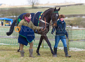 Race 5 (Restricted) - The Belvoir at Garthorpe 30th March 2013.