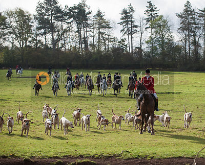 Grove & Rufford Hunt