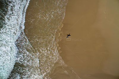 Aerial view of  surfer walking on beach towards the sea, Abersoch, Gwynedd, Wales, UK, May
