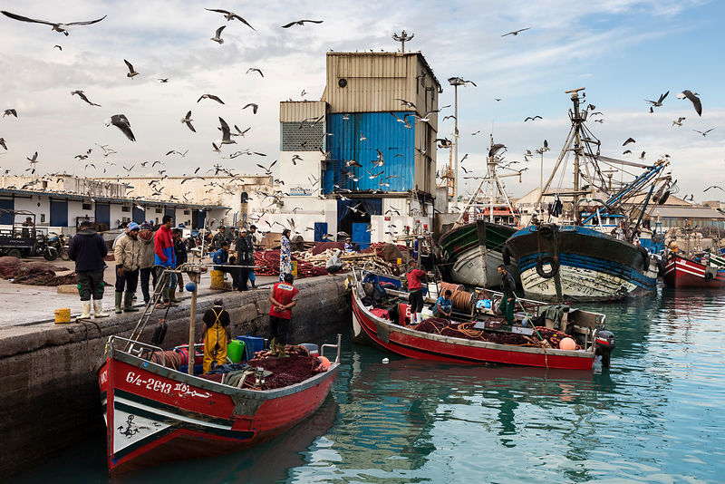 Fishing Boats at the Casablanca Fishing Port