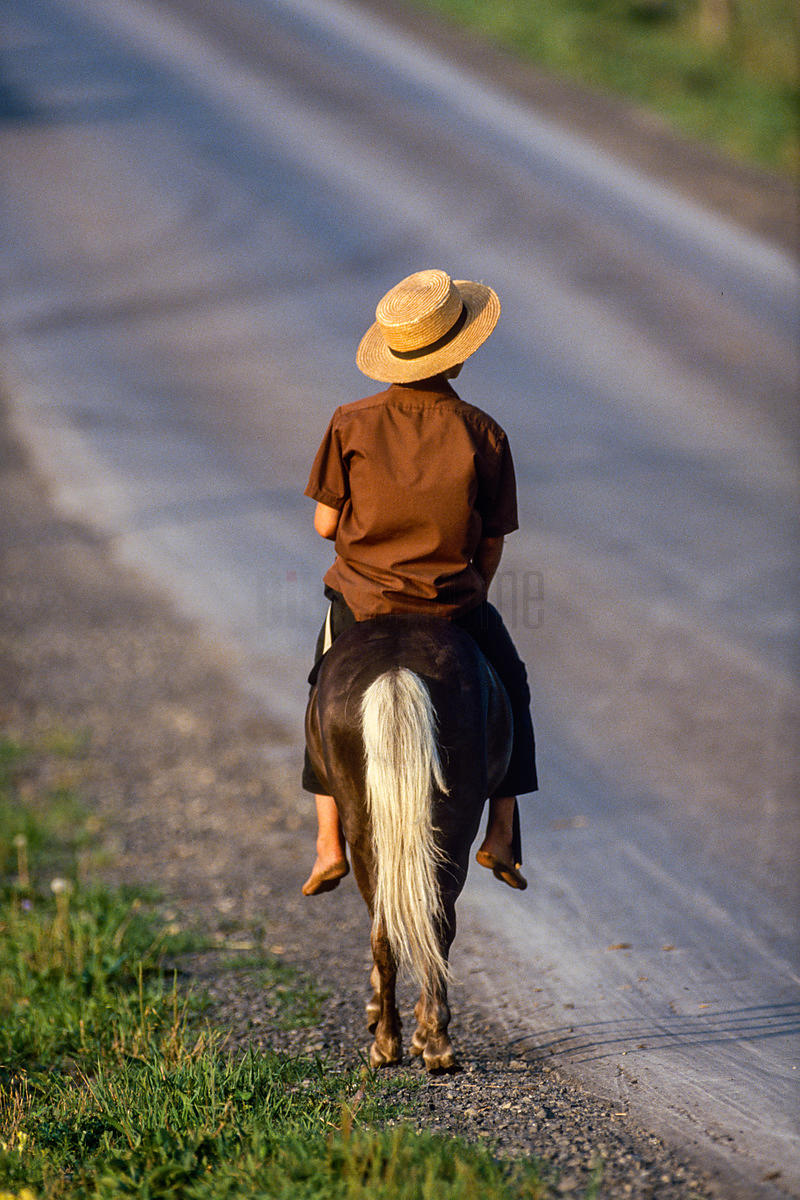 Rear View of an Amish Boy on Horseback