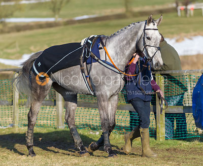 Race 6 (Open Maiden) - The Belvoir at Garthorpe 30th March 2013.