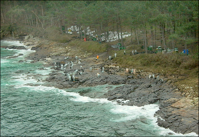 SPAIN Illas Cies (Cies Islands) -- 15/12/2002 -- Aerial view of volunteers clean rocks on a polluted stretch of the coastline...