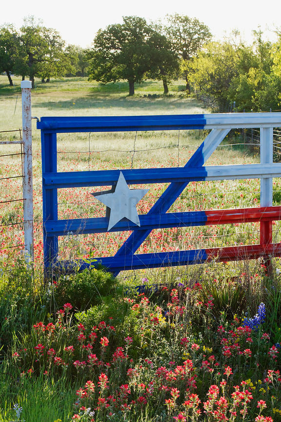 Fence With a Texas Paint Job