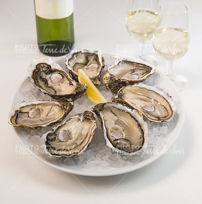 Oysters on ice and with a piece of lemon and wine