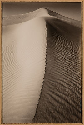 'Empty Quarter'  No.4  United Arab Emirates 1998: Photographer:  Neil Emmerson. £975 Inc UK VAT