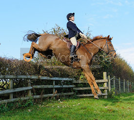 jumping a hedge - The Fernie Hunt at Knights Farm 10/11
