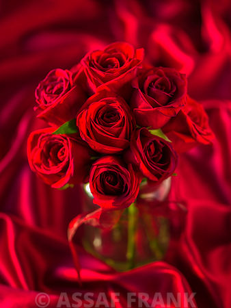 Bunch of red roses in vase