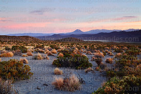 View over central Andean dry puna desert at sunset, Cariquima volcano in distance, Isluga National Park, Region I, Chile