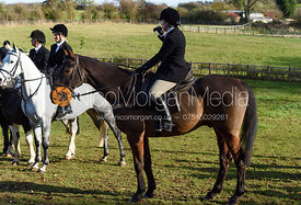 at the meet. The Cottesmore Hunt at Tilton
