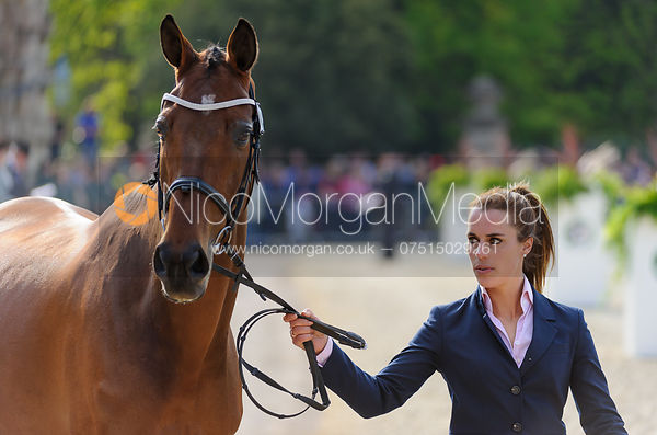 Merel Blom and RUMOUR HAS IT - Mitsubishi Motors Badminton Horse Trials 2013