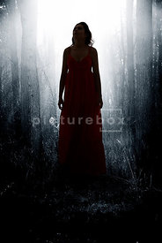An atmospheric image of the silhouette of a mystery woman, in a red dress, standing in a dark, misty forest.
