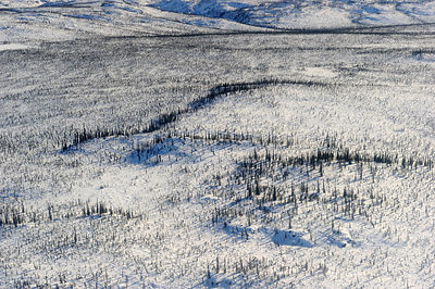 Aerial view of Mackenzie delta in winter, North West Territories, Canada April 2010