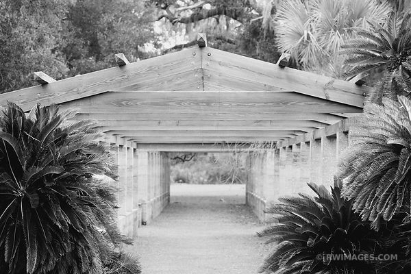 OLD ARBOR STRUCTURE NEAR DUNGENESS MANSION RUINS CUMBERLAND ISLAND GEORGIA BLACK AND WHITE