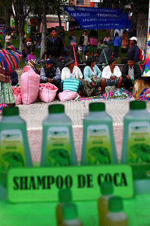 Stall selling shampoo made from coca leaf extract at trade fair promoting alternative products made from coca leaves , La Paz...