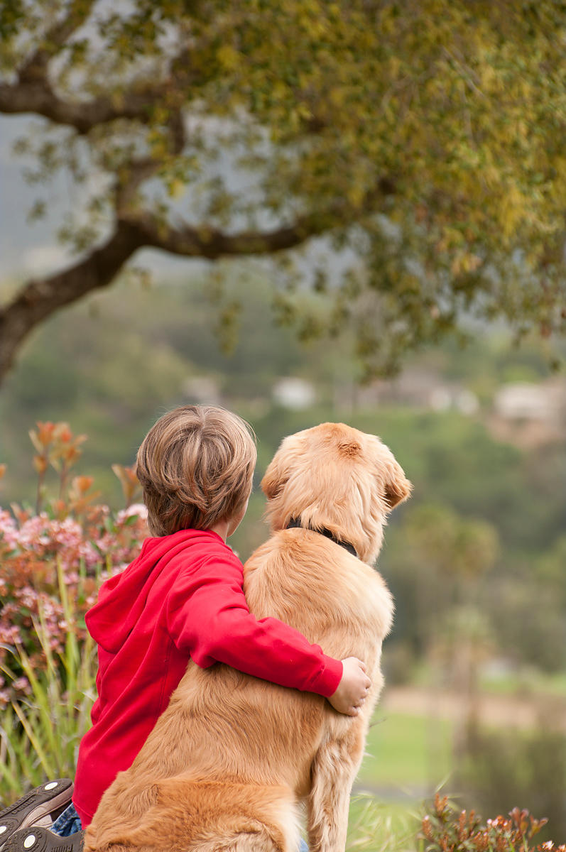 Boy and dog sit looking at view from behind