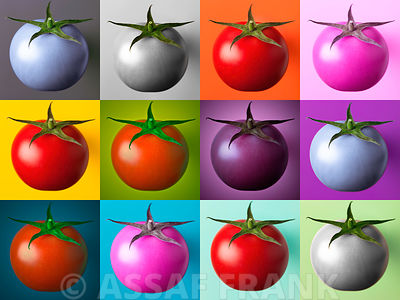 Multicoloured Tomatoes in collage