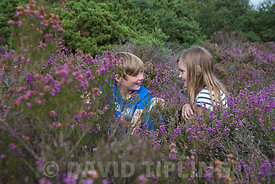 Brother and sister  on heath Kelling Norfolk UK