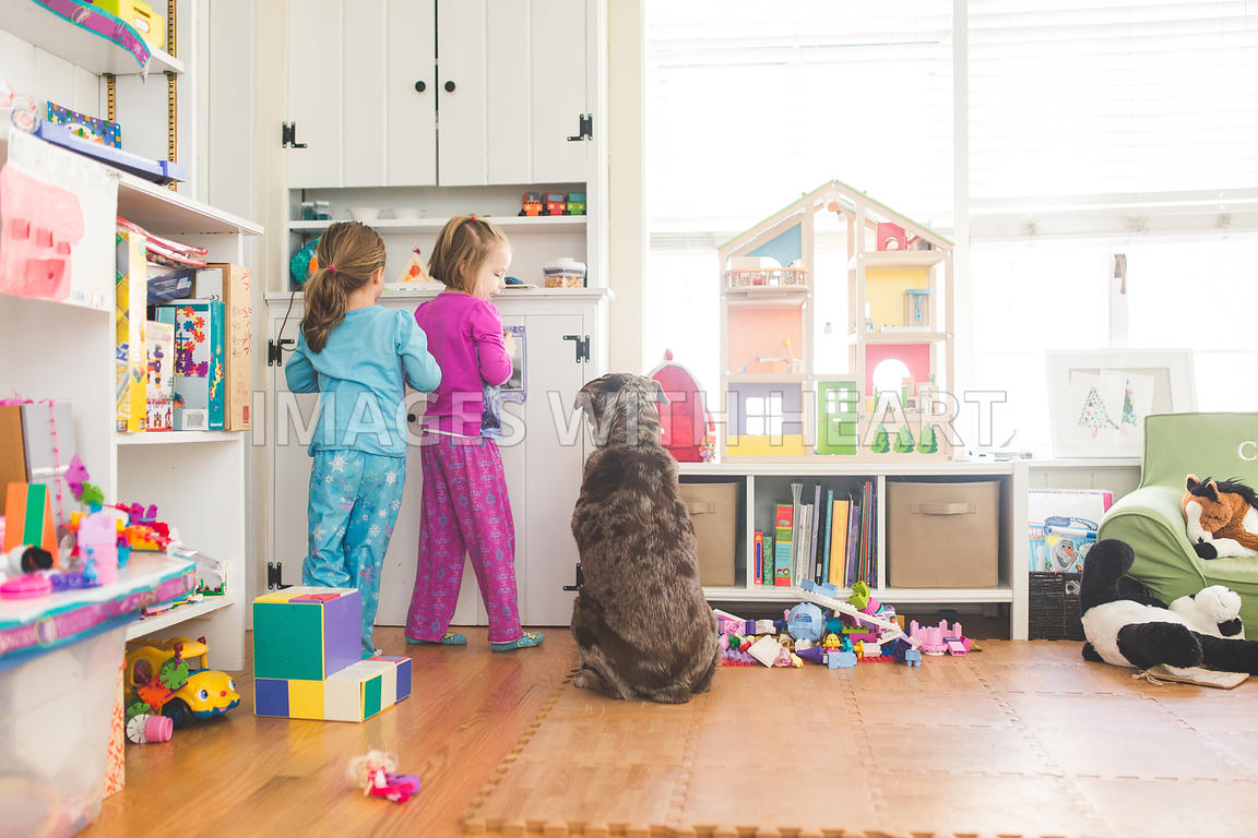 Young girls in playroom with dog sitting watching them